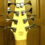 8-String Electric Bass Gears