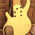 8-String Electric Bass Back