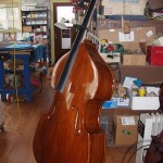 The bass now has been varnished and is allowed to cure for two weeks